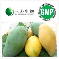 Wild Mango Seed Extract from GMP Manufacturer