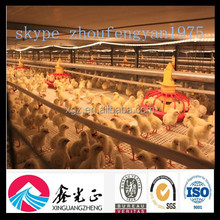 china best price high quality prefabricated poultry house farm