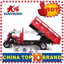 Popular 3 wheel cargo tricycle adult cargo bike with Dumper