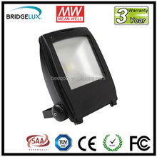 high lumen 70W Flood Outdoor Led Light Spots with COB leds