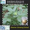 Natural 0.8% Eleutherosides B+E Siberian Ginseng Extract