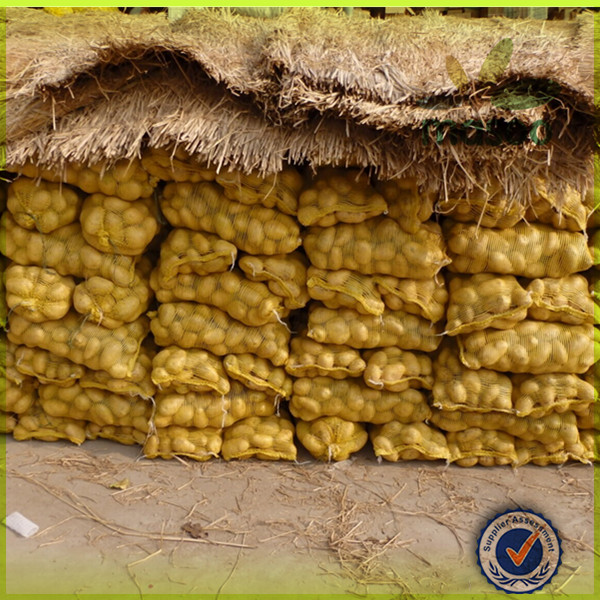 Sweet High Quality Fresh Potato with Low Price / roasted new potatoes / potato potato