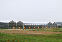 ISO9001:2008-galvanized steel frame green house