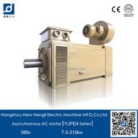 NHL IE4 220v 380v 3 phase electric asynchronous motor