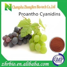 Natural Grape Seed Extract Powder, anthocyanin OPC95% grape seed extract