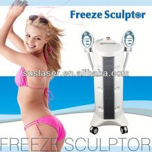 2015 Fast Slim Cryotherapy Fat Breaking Machine S80B CE/ISO Salon Beauty Instruments