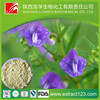 Manufacturer Supply Radix Scutellariae Baicalensis
