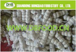 2015 Chinese Fresh Garlic White For Sale 5.0CM 10KG Carton/Mesh Bag