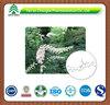 Natural China Black Cohosh Extract Triterpene Glycosides