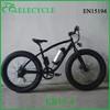 /product-gs/eb15-350w-26inch-li-ion-battery-26-4-0-fat-tire-beach-cruiser-electric-bike-60264772686.html