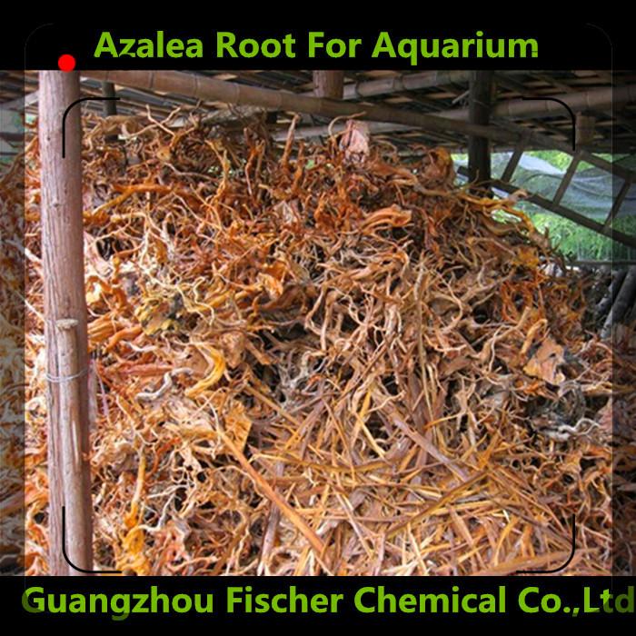 usine fournisseur aquarium paysage racine naturelle d coration racine azal e racine pour. Black Bedroom Furniture Sets. Home Design Ideas