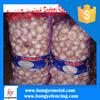 PP Tubular Onion Mesh Bag