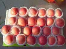 wholesale importer of China fresh apple fuji apple