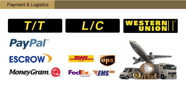 06 payment and logistics