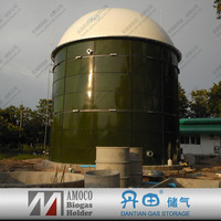 Biogas digester-biogas plant/biogas system for organic waste to energy for sale