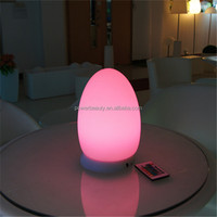 brightness controlable decorative lighted lamp /LED color changing lamp for exhibition/fair/meeting/event