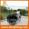 front box two wheel cargo bike electric canada