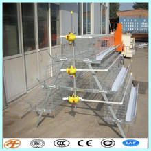 factory supply 3tiers or 4 tiers Egg Laying Chicken Coop
