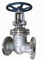 MSS SP -70 nonrising stem type stainless steel gate valve
