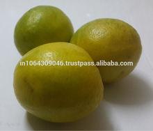 india limón fresco