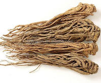 100% Natural Ligustilide 1% Dong Quai Root Powder