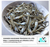 Dried salted anchovy whole fish