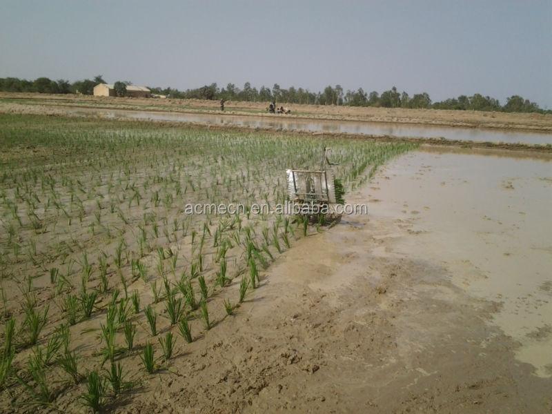 2015 HOT China ACME Small Manual Rice Paddy Transplanter (skype/wechat: sherlley88, whatsapp: 008618971112939)