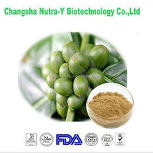 GMP&FDA manufacturer supply green coffee bean extract loss weight