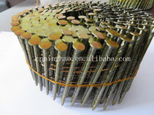common wire nail iron coil nail factory