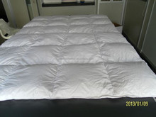 50% White Duck Down 50% Feather Quilt / Comforter