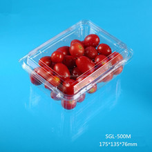 cheap oblong PET disposable plastic food fruit vegetable container packaging box