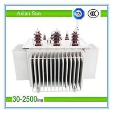 Copper Winding 11KV Oil Type Transformer
