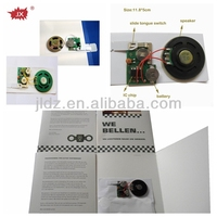 Programmable Sound Modules for Greeting Cards and Toys/ Music Talking IC Chips Burner/ Voice Record IC Chips Writer