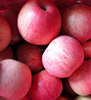 Chinese Fresh Qinguan apple in cold storage wholesale grade A fruit apples