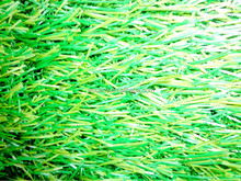 Outdoor eco-Friend natural leisure artificial turf grass