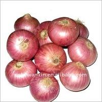2011 fresh yellow onion