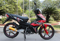 eec cub motorcycle 110cc, moped motorcycle