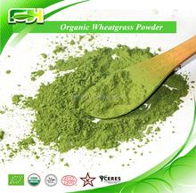 Popular Health Drink Organic Wheat Grass Powder