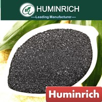 Huminrich Humate Organic Raw Material Humic Fulvic Acid for Liquid Formulation