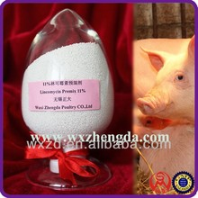 The Largest GMP Factory manufacturer supply Lincomycin hydrochloride and spectinomycin sulfate premix poultry antibiotics