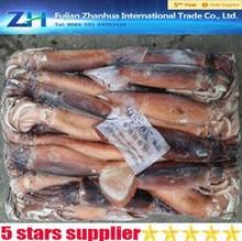 China 12.50 kg illex venta al por mayor, calamar huevos frescos, WR mar frozen calamar venta