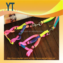Colourful Pet Collar/High Quality pet leash