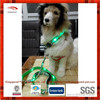 flashing led dog collar and leash set with logo printed