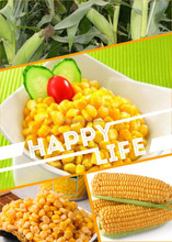 Hot Sale 3kg Canned Sweet Kernel Corn Food with Competitive Price