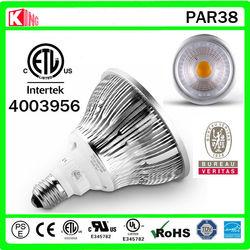 18W LED PAR38 COB Lamp/Light/Lite/Licht-Interior Lighting Bulb-Epistar Chip Spot Light