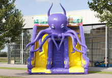octopus theme inflatable slide/dry slide for kids and adults