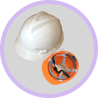 Custom Safety Helmet