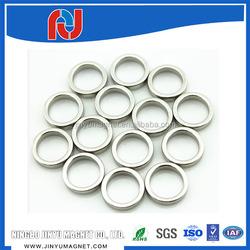 Neodymium motor magnet