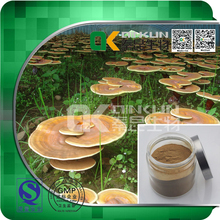 Factory Supply 100% Natural Ganoderma Lucidum Extract Herbal Extract