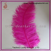 Wholesale pink cheap ostrich feather decorations